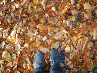 autumn leaves with feet in walking boots