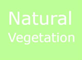 natural%2Bvegetation