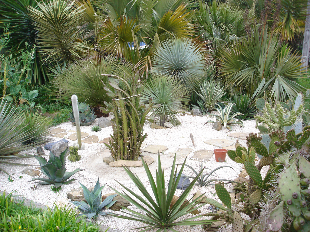 Decoracion actual de moda jard n de piedras espectacular for Canteros con piedras y plantas