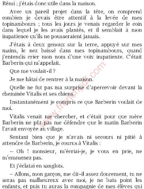 Roman: Sans famille de Hector Malot PDF Gratuit
