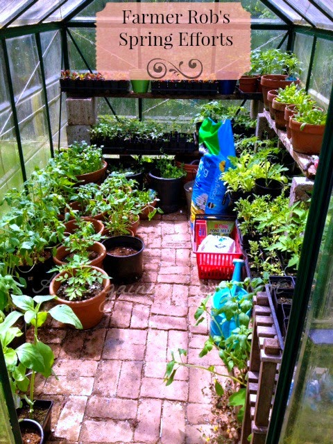 Wordless Wednesday - Checking On The Greenhouse - Ann Again and again