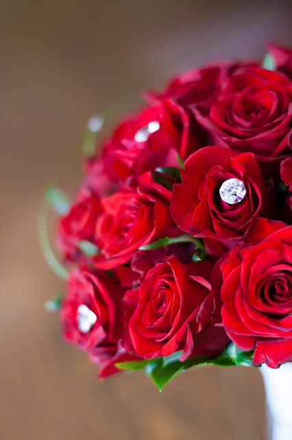 red-roses-hd-images-download