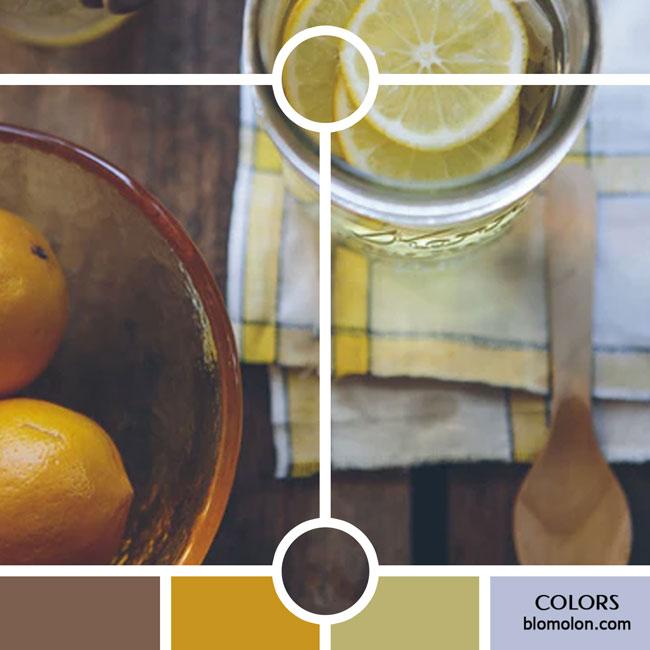 variedad_en_color_color_30
