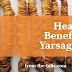 Health Benefits of Yarsagumba / Keeda Jadi
