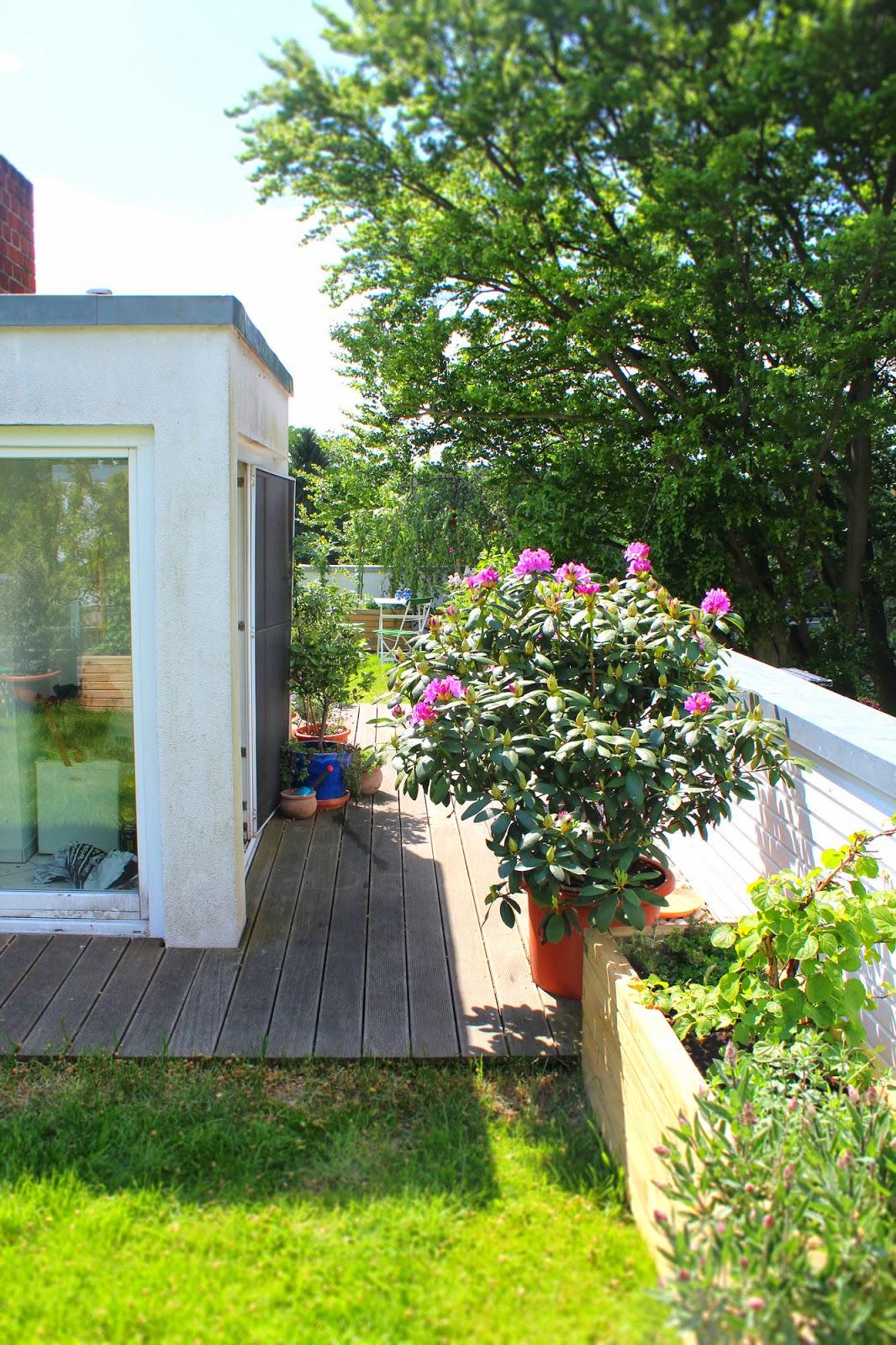 ein cottage garten auf dem dach update 7 5 rundumblick. Black Bedroom Furniture Sets. Home Design Ideas
