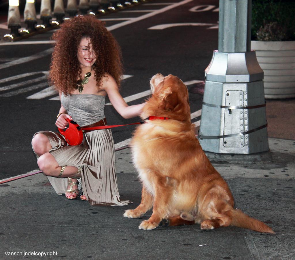 Beautiful Woman With Animal