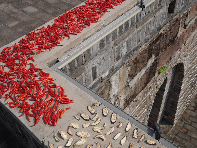 chili peppers drying on the old city wall in Ganzhou