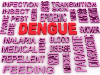Dengue-fever-myths-facts-vaccine-treatment-in-Hindi