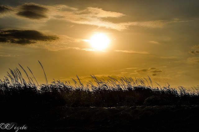 Залез-на-плажа-Sunset-at-the-beach