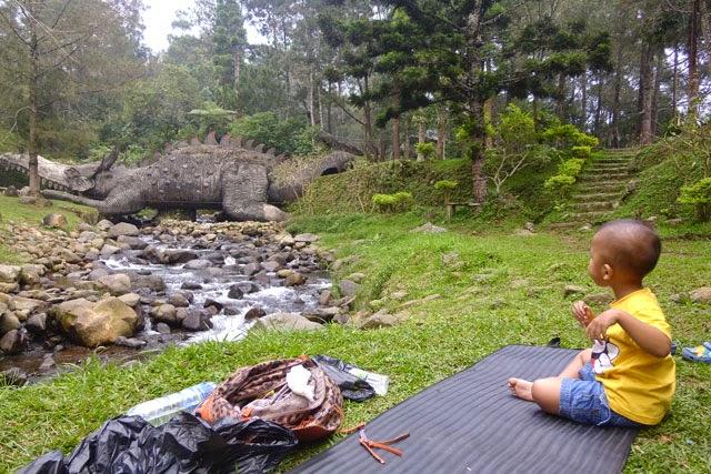 areal-camping-mandalawangi
