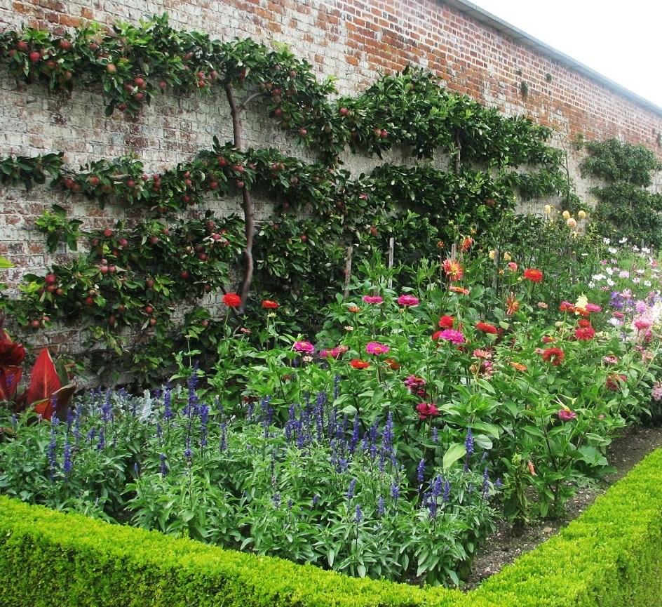 Espalier Garden Redux: Early American Gardens & Farms: Landscape Design