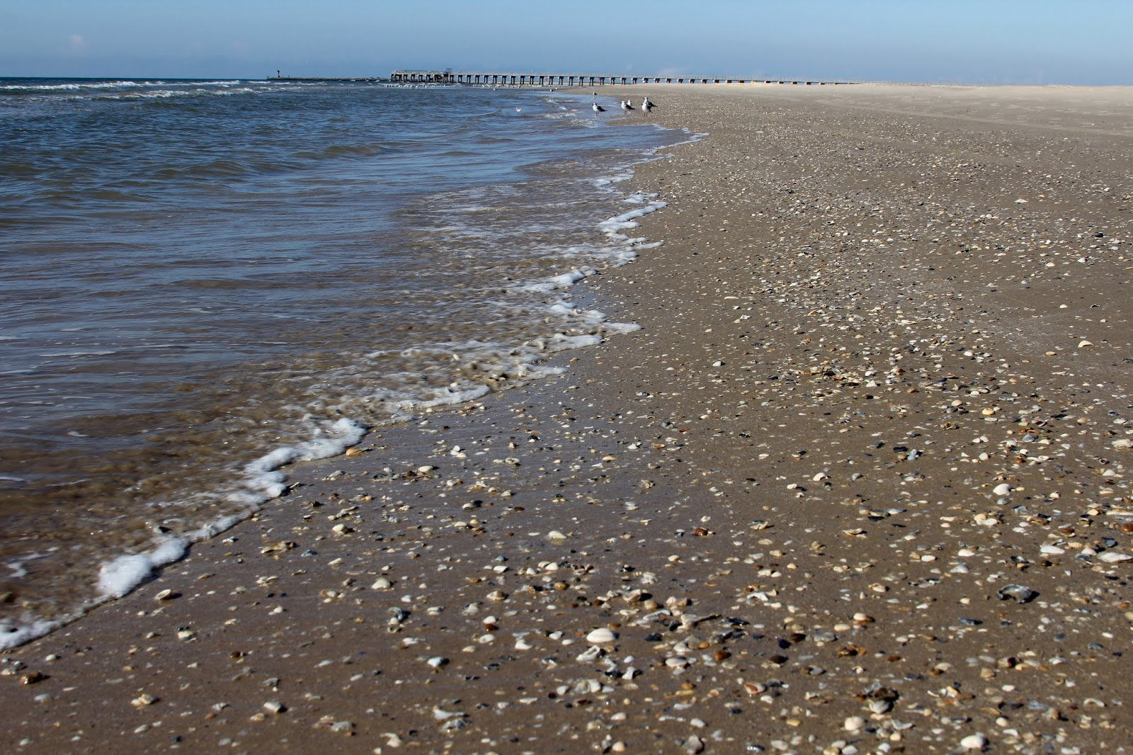 Shell Beach Texas The Best Beaches In World