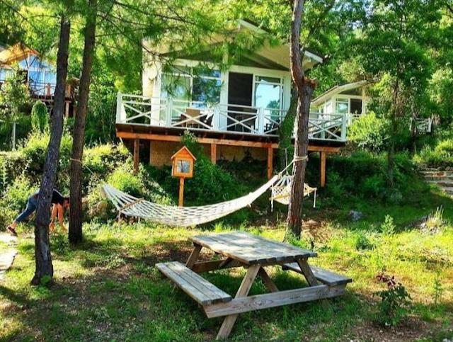 Tempat tinggal yang Menyatu dengan Alam