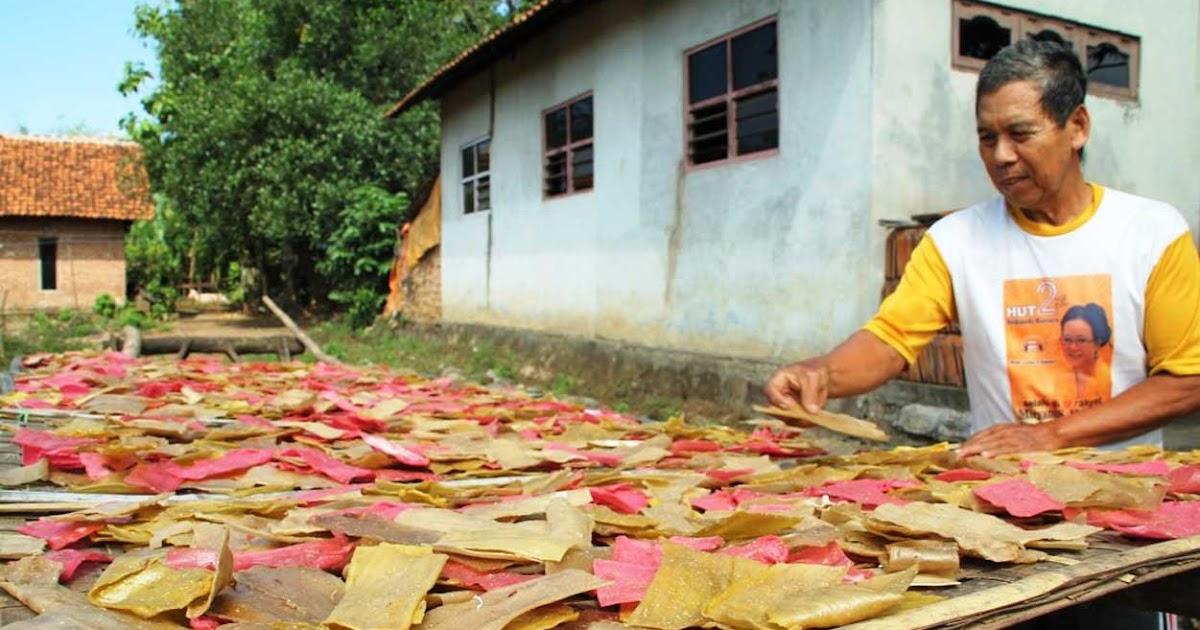 12 Contoh Peluang Usaha yang Menjanjikan di Desa | -Petani ...
