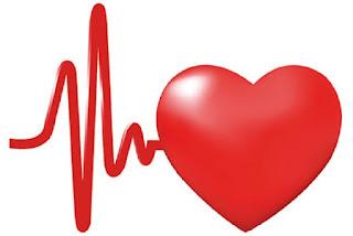 كيف يدق القلب ؟
