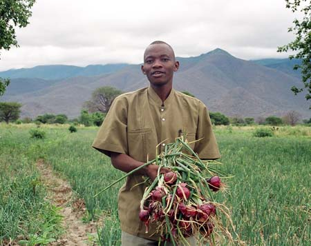 Urbanized Food Africa