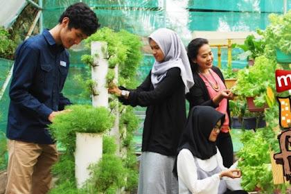 Harga Tiket Masuk Taman Buah Mekarsari Terbaru Bulan Oktober 2018