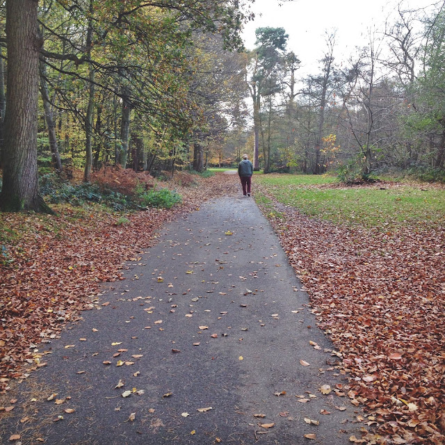 Virginia Water, Love Maisie