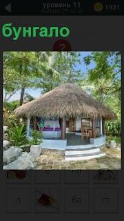 Хижина с соломенной крышей, похожая на бунгало среди пальм под голубым небом