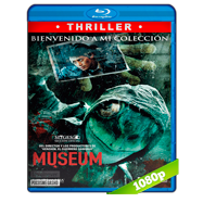 Museum (2016) BRRip 1080p Audio Latino-Japones