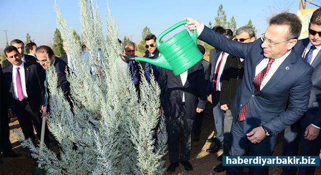 DİYARBAKIR-Diyarbakır'da 15 Temmuz ABD destekli darbe girişimine karşı düzenlenen gösterilerde katledilenler için valilik tarafından hatıra ormanı için fidan dikme töreni düzenlendi.