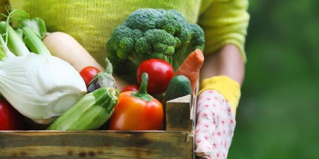 www.Pola Makan Yang Sangat Efektif Untuk Mencegah Terjadinya Penyakit Kanker Payudara