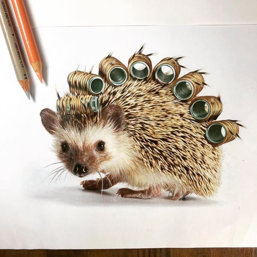 02-Hedgehog-Perm-Quanyu-www-designstack-co