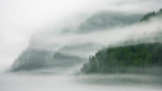 Kabut termasuk dalam koloid jenis aerosol cair