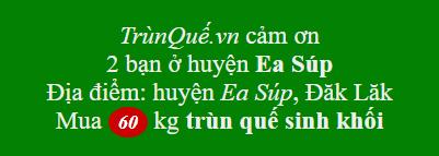 Trùn quế về Ea Sup