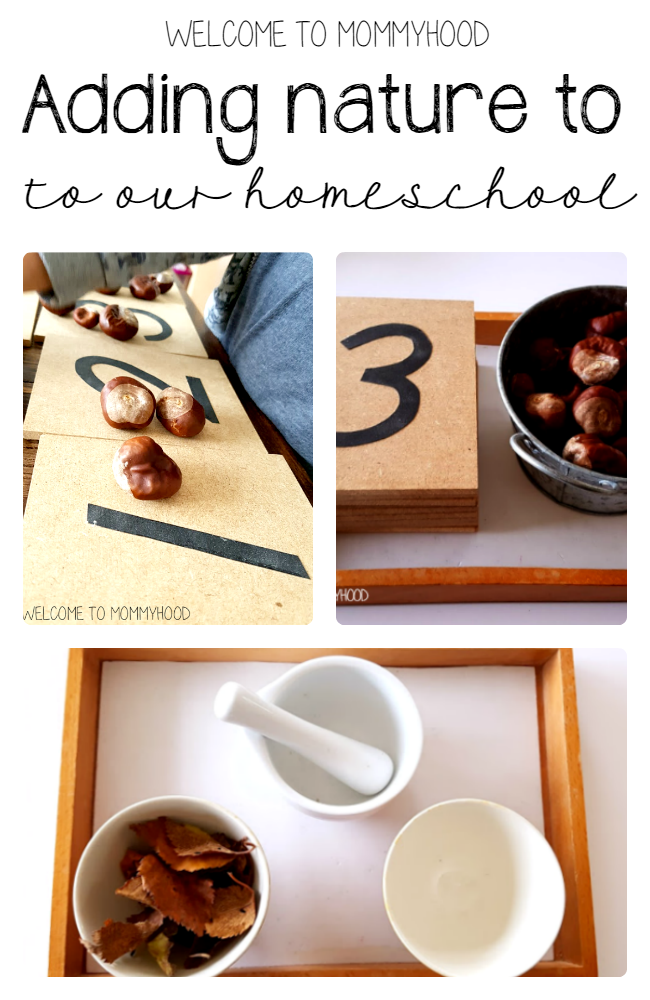 Nature in homeschool activities by Welcome to Mommyhood, #montessori, #nature, #preschoolactivities, #montessoriactivities,