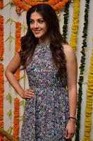 Actress Mehreen Kaur Latest 2017 Po Stills16 ~  Exclusive Celebrities Galleries.jpg
