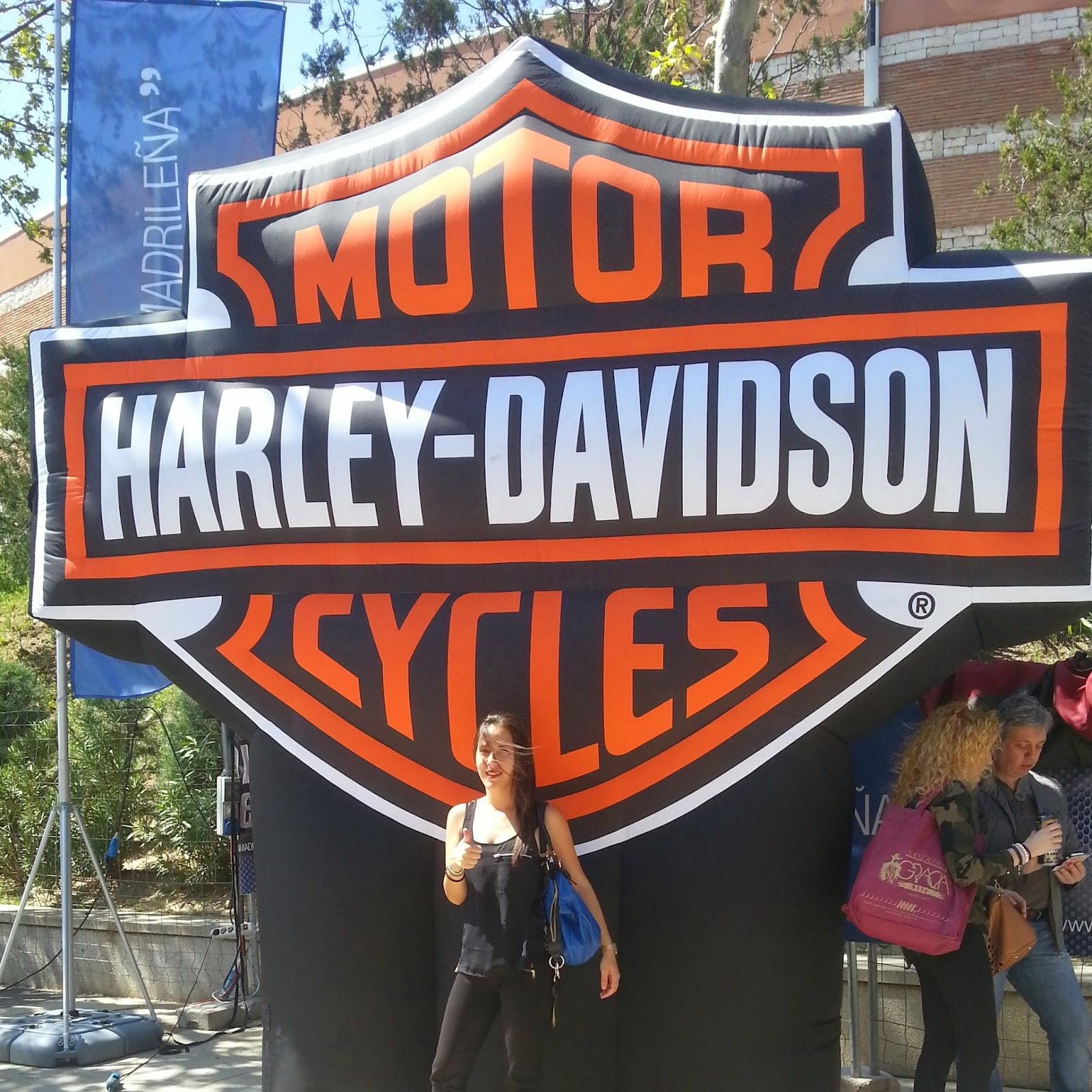 Harley-Davidson el viajero motero