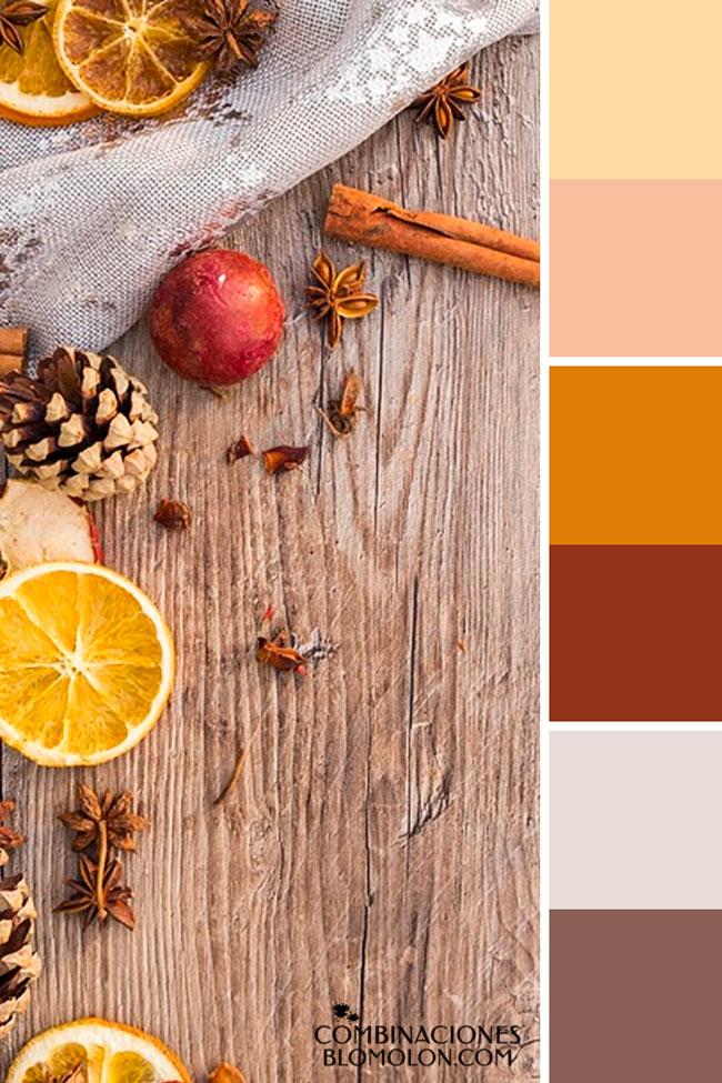combinacion_de_colores_variedad_de_temporada_1