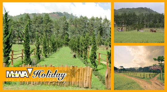 Wisata Ber Kuda Ala Cowboy De'Ranch Lembang