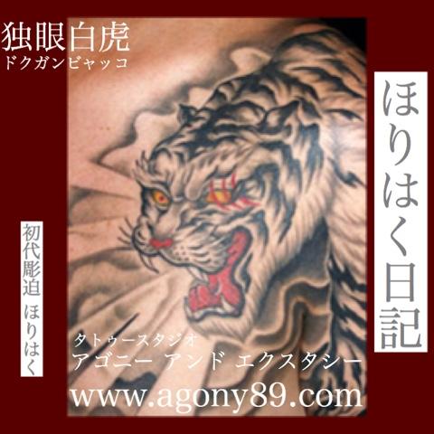 "<img src=""horihaku.blogspot.com"" alt=""刺青デザイン和彫り虎""/>"