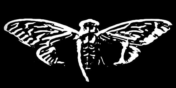 لغز-Cicada-3301-أخطر-قصص-الإنترنت-المظلم