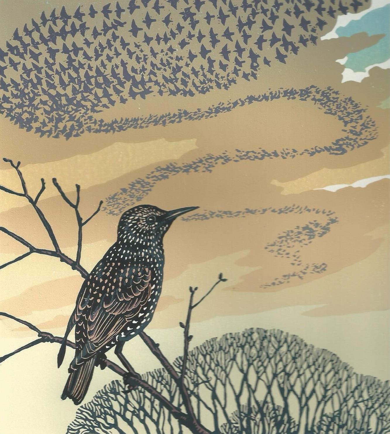 Murmuration: Wildlife With Pen And Brush