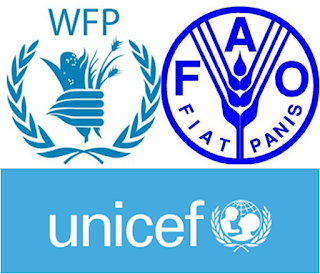 Five UN agencies to unveil first-ever consolidated report on malnutrition