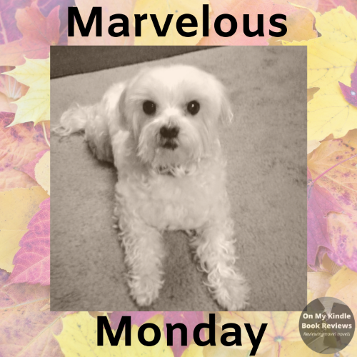 Marvelous Monday with Lexi: Sept 24th edition!