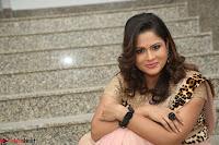 Shilpa Chakravarthy in Lovely Designer Pink Saree with Cat Print Pallu 043.JPG