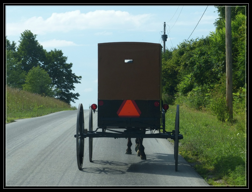 Sharing the Road with an Amish Buggy