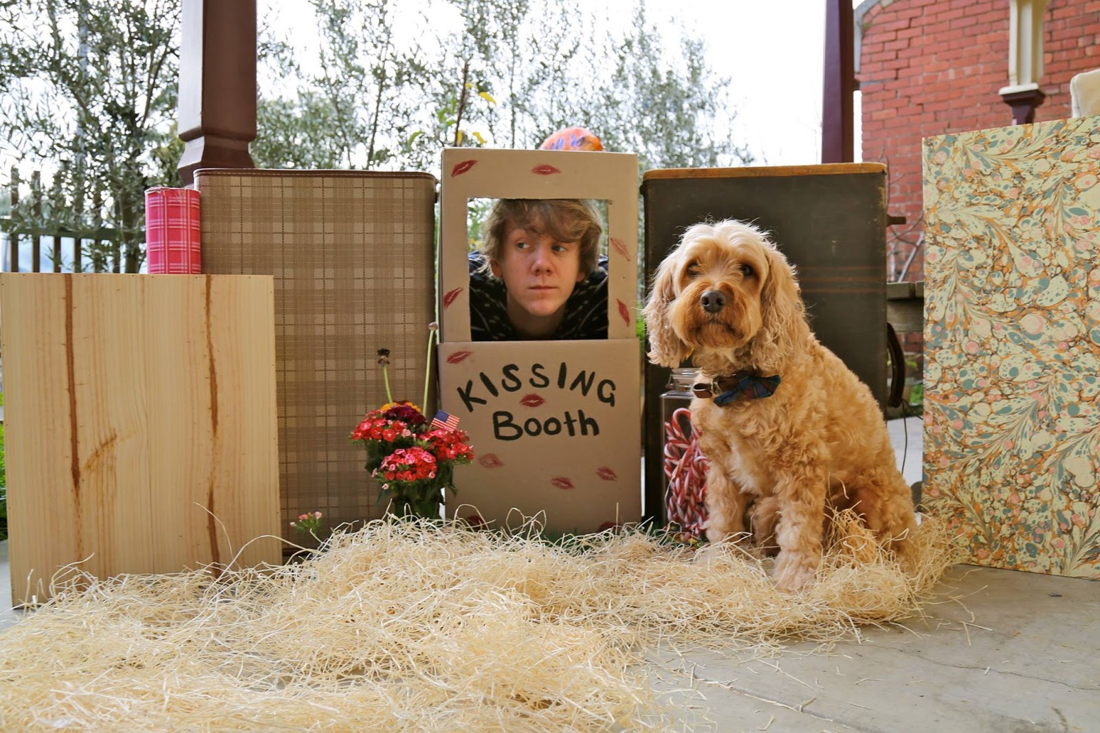 josh thomas, please like me, pivot, netflix,