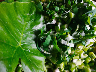 Sayur Lumbu (Lompong)