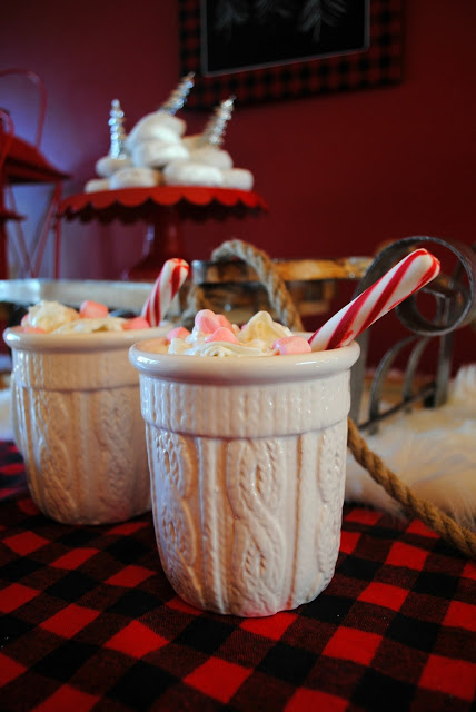 hot-chocolate-plaid-winter-party