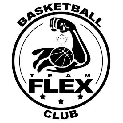 Image result for team flex basketballmanitoba