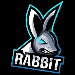 logo dls kelinci