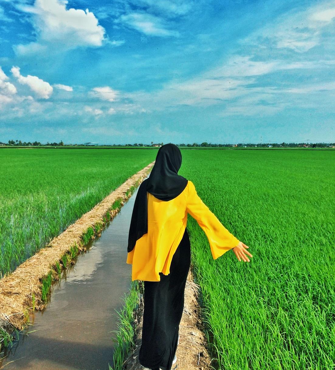 Sekinchan Selangor Lokasi Photoshoot Di Dalam Sawah Padi Qaseh Dalia S Blog