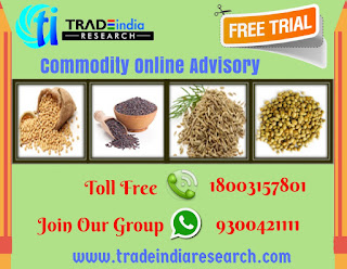 Commodity Online Advisory