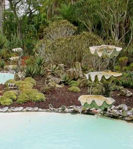 Clam Shell Fountain Garden Landscaping Idea Tropical Theme