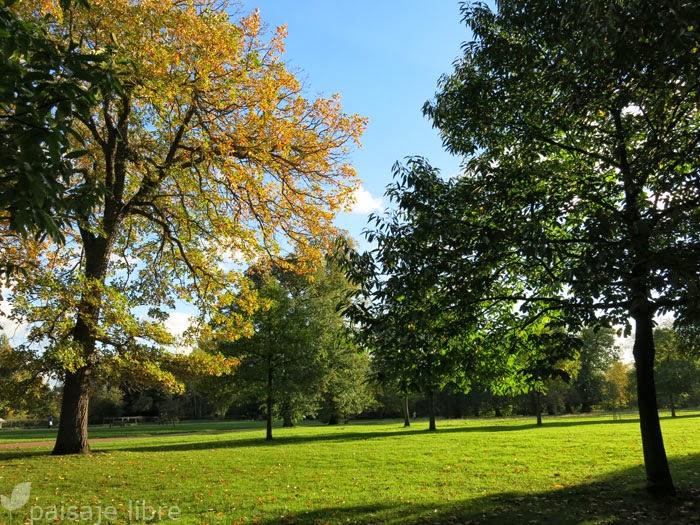 Kensington gardens en londres parte i paisaje libre for Jardines de kensington